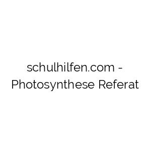 Photosynthese Referat